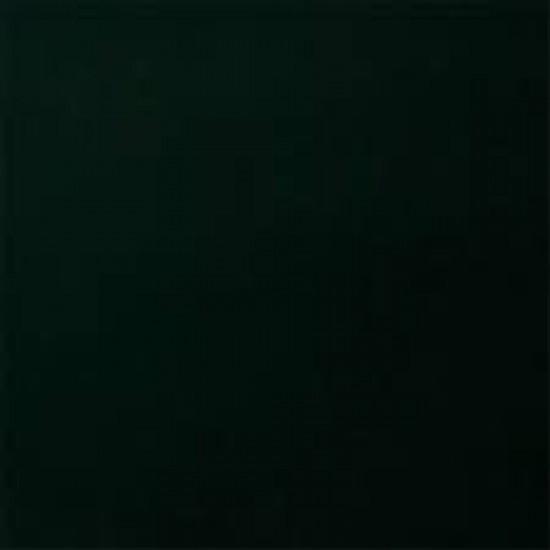 CHAMAELEON Аэрозольная краска ReadyMix  307 зеленый сад 400мл