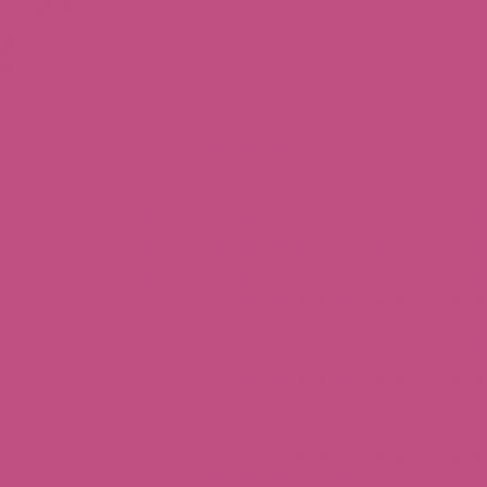 MAXI COLOR Краска универсальная ярко фиолетовый  Ral 4008400 мл