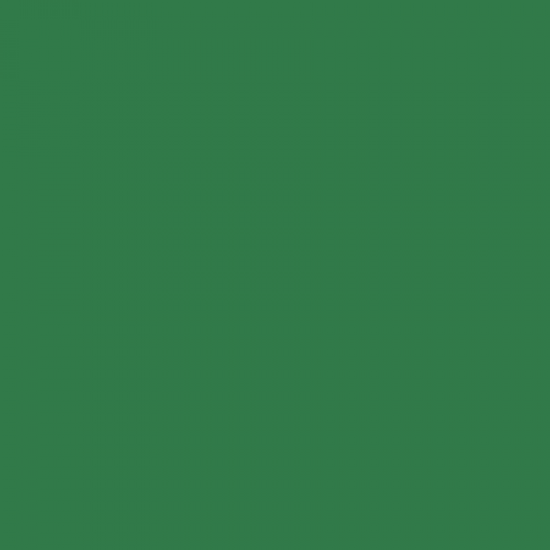 MAXI COLOR Краска универсальная мятно-зеленая Ral 6029400 мл